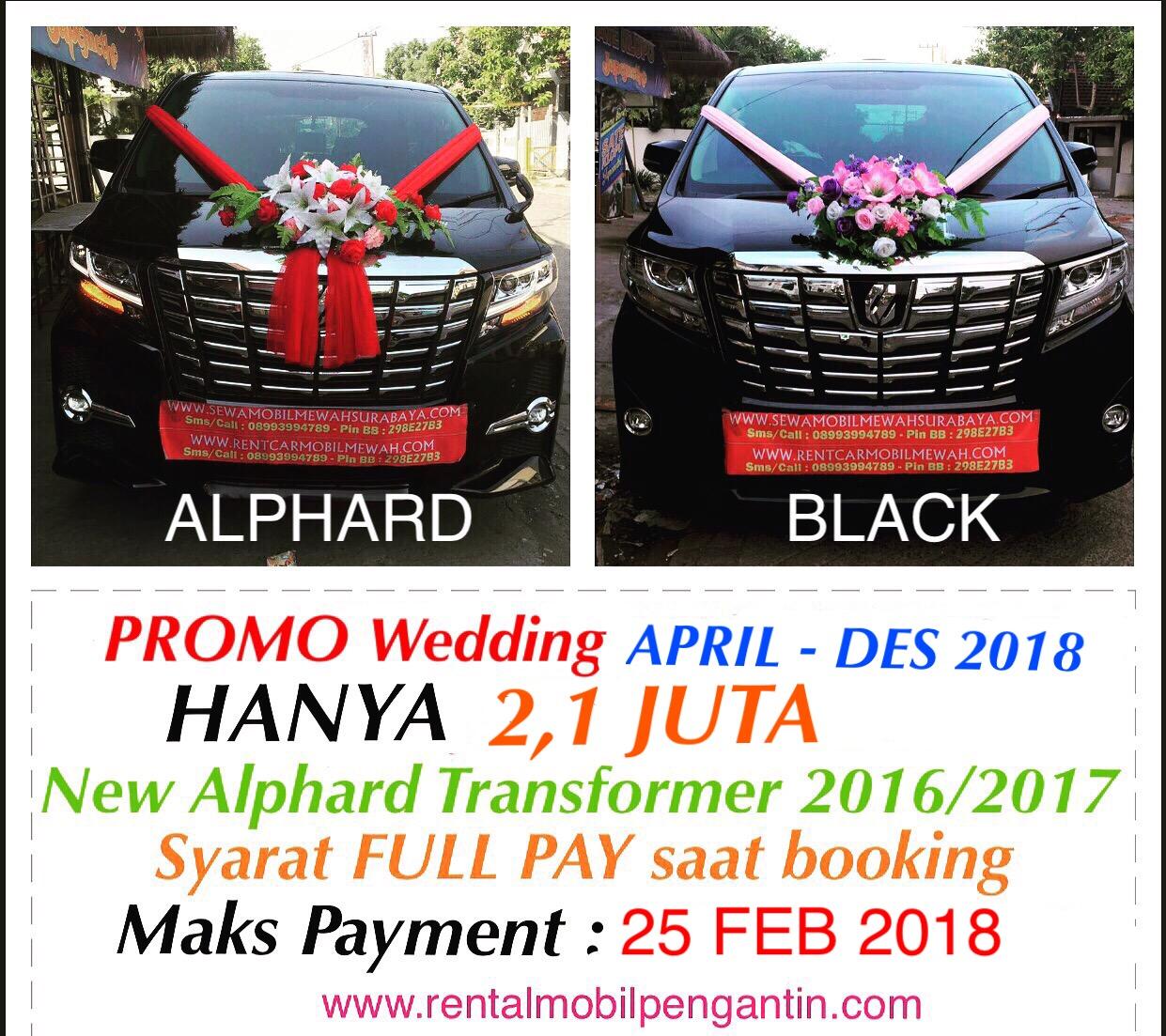 rental mobil mewah murah alphard vellfire wedding surabaya